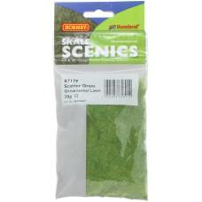 Static Grass - Ornamental Lawn 2.5mm