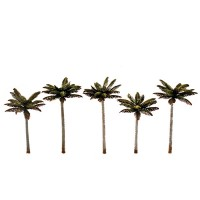 Palm Trees - Small (5)